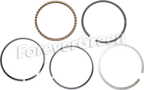 40075 Piston  Ring Assy