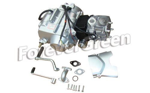 52000B Electric&Kick Starter Down Manual Engine  110cc