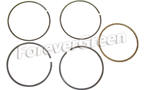 67008A Piston Ring 67.25mm