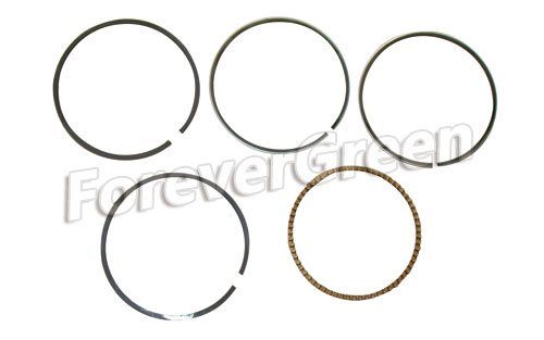 67008B Piston Ring 67.50mm