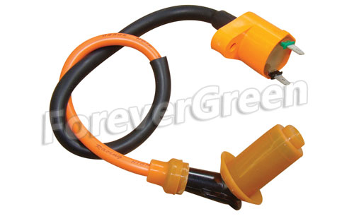 PE046 Ignition Coil Assy